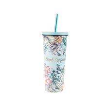 Wholesale 17oz 24oz Stainless Steel Vacuum insulated double wall beer costom tumbler cups thermo with straw in stock