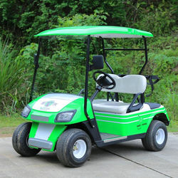 Environment Friendly 2 Seater Electric Golf Cart Mini Club Car