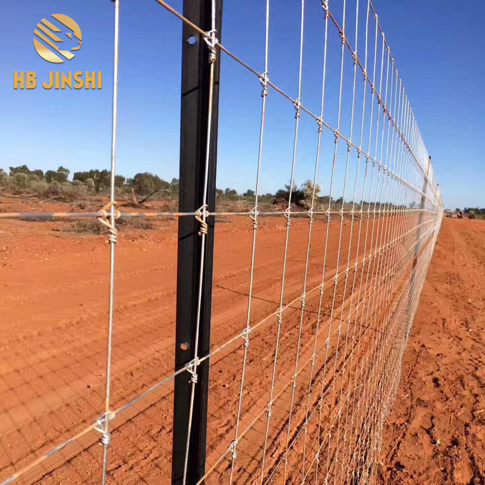 2.4m*50m Galvanized Farm Field Fence Wire Deer Fence