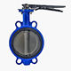 Valve Valve Wafer Type PN10 PN16 150LBS Working Pressure 16 Bar Stamping Handle Butterfly Valve Wafer