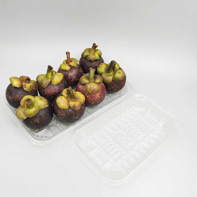 Wholesale custom Supermarket Disposable fresh food Blister packaging thickened Food Pack PET Plastic Meat Chicken fruits tray