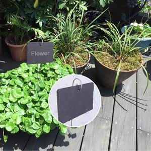 Herbs Potted Plants Flowers Reusable Natural Slate Plant Label Stakes for Vegetables 20 Piece Slate Garden Plant and Vegetable Markers Complete with Soapstone Chalk or Decoration