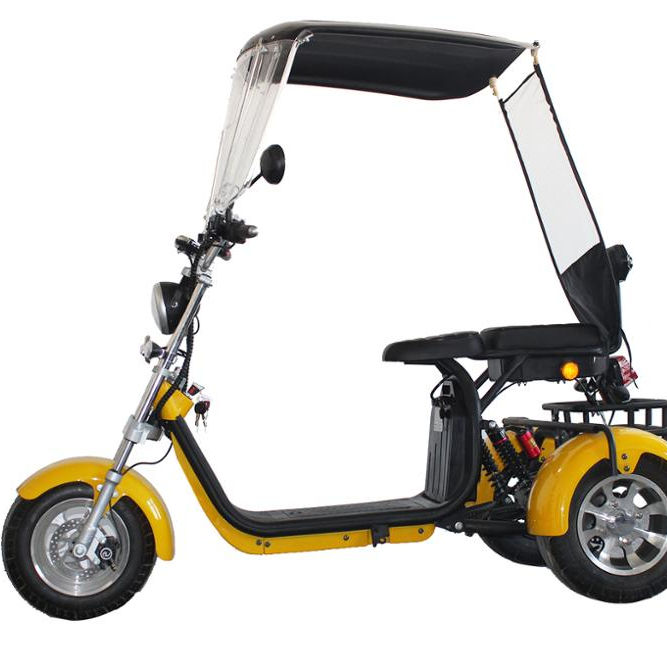 Emak/COC/EEC Modern Design 3 Wheel Electric Scooter 2000W Citycoco For Adult Eec Standard