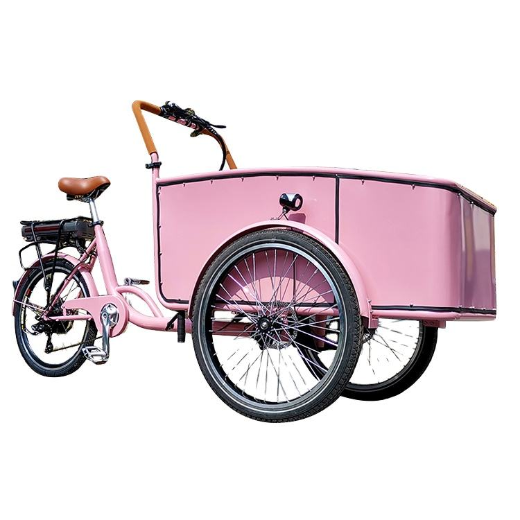 China Factory Cargo Bike Manufacturers Family Biking Transport Vehicle 3 Wheel Electric Cargo Bicycle