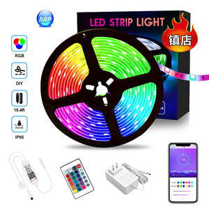 China high quality flexible digital rgb 5050 dream color 5 meter led strip outdoor led light strips with bluetooth controller