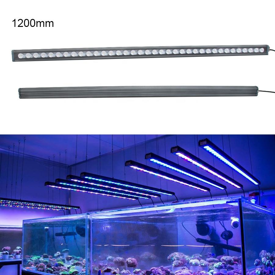 New design Chinese cheap 30w/45w/60w Led Aquarium Light aquatic coral reef used aquarium led lighting reef led light