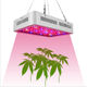 Amazon hot style 600w led grow lights high power indoor plants lights