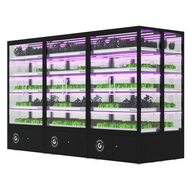 Vertical hydroponic smart system for growing herbs, wholesale prices