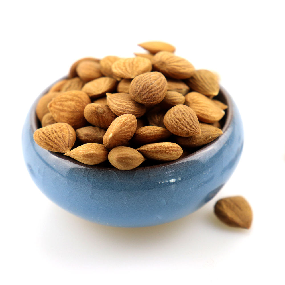 wholesale Chinese Apricot Kernels almonds for sale