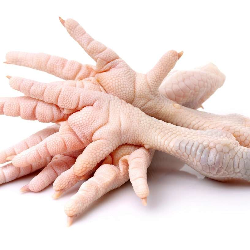 Wholesale Halal High Quality Frozen Chicken Feet
