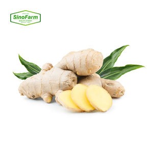 Chinese fresh ginger air dried ginger price per ton in bulk