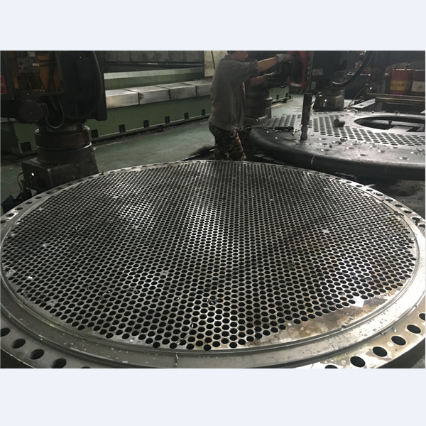 Forged High pressure tube sheet / hydrogen tube sheet used in Petrochemical