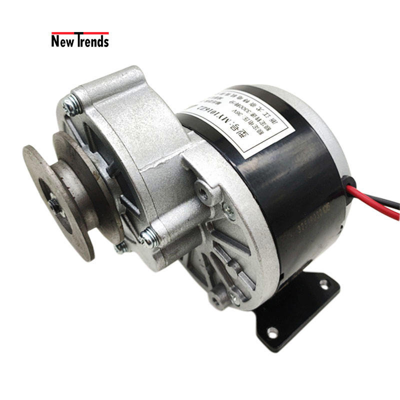 Custom MY1016 Z2 12V/24V/36V 250W Electric Bicycle Bike Scooter planetary Gear DC Brushed Motor With Belt Pulley Bracket