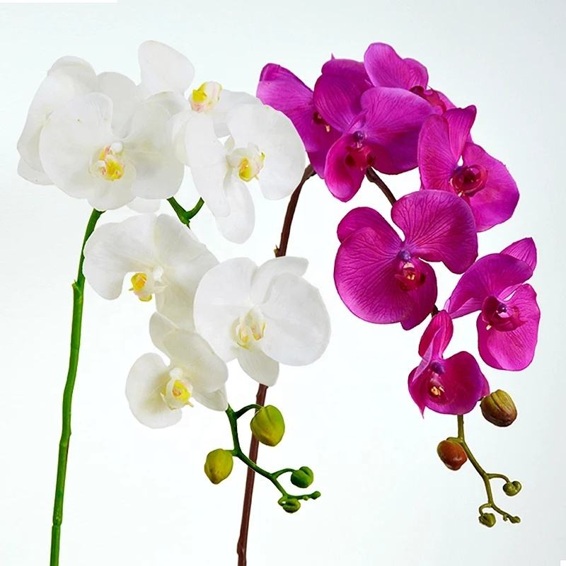 Factory direct as seen on tv product phalaenopsis flower bulk silk orchids