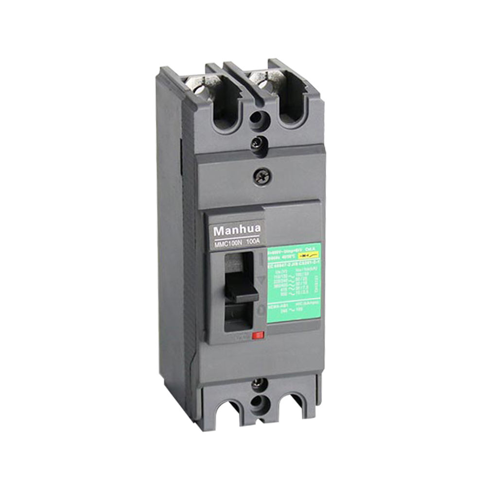 Manhua CB CE Certificated Breaking Capacity Adjustable MMC 100N 100A 2P Moulded Case Circuit Breaker