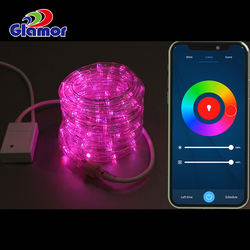 led light rope with remote control RGB rope twinkle rope lig