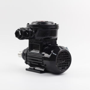 High Quality Explosion-proof mini gear pump in factory price magnetic gear water oil pump