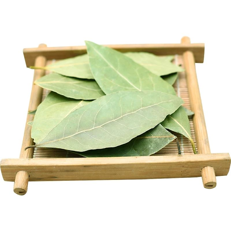 High Quality Natural Spices Bay Leaf Cassia Leaf