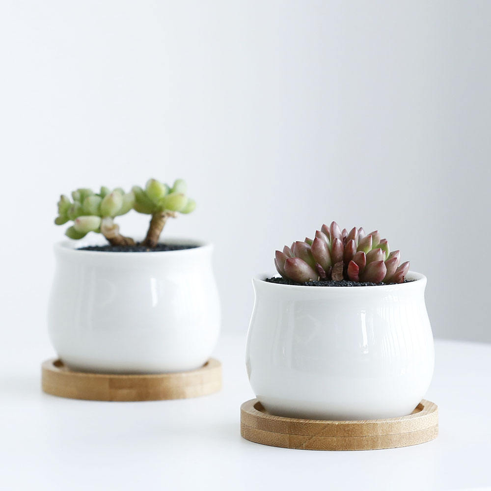 Best selling wholesale mini pots for plants white ceramic succulent pots with bamboo base