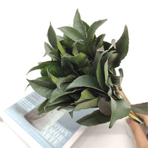 wholesale natural preserved plant real touch foliage osmanthus leaf everlasting dried leaves material