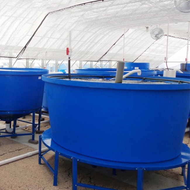 High quality large round plastic aquaculture poly tanks for fish