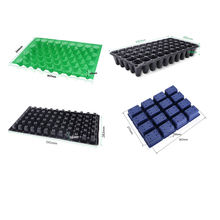 black plastic blister packaging strawberry plant seed growing trays