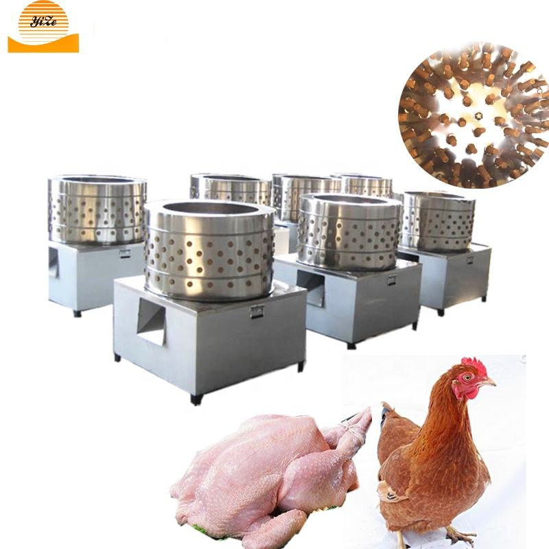 Stainless steel Poultry feather plucker machine / Quail plucker machine chicken feather cleaning machine