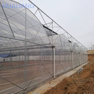 multi-span UV treated polyethylene film greenhouse for tomato and cucumber