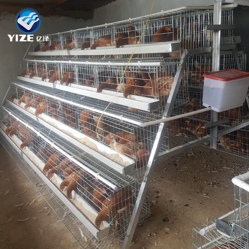 Automatic poultry farming equipment for breeder/broiler/turkey/chicken farm