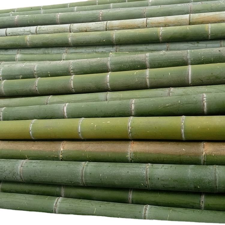 Best selling wholesale high quality raw bamboo poles with low price