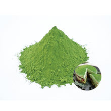 Good quality japanese organic matcha protein powder with excellent taste