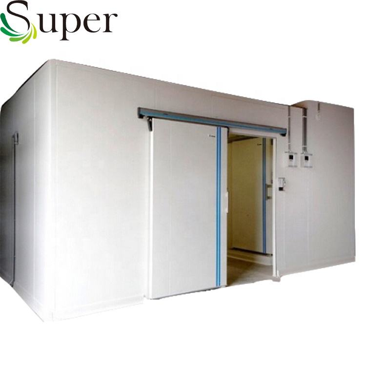 Hot Sale Professional Refrigeration Fruits and Vegetables Cold Storage Room