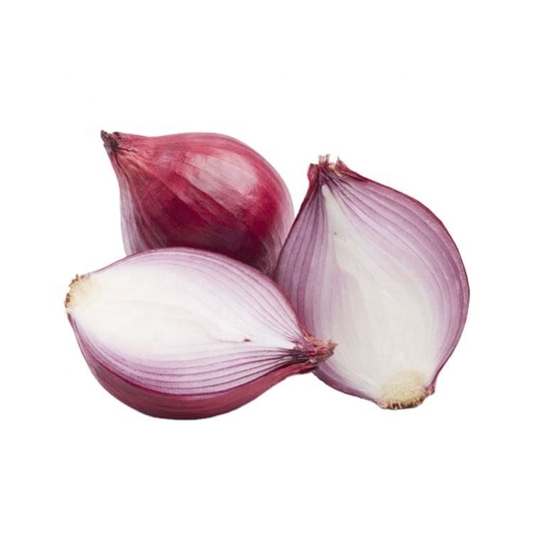China production delicious organic onion round onion fresh garlic and onion
