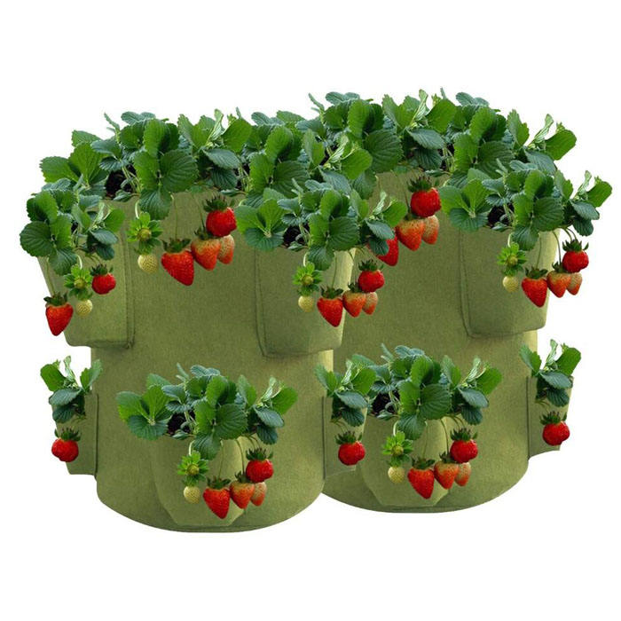 Heavy Duty Non Woven Fabric Pots Vinyl Etchings Strawberry Plants Flowers Vegetables Plant Grow Bags