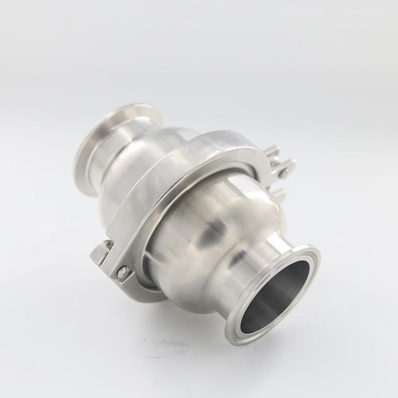 ss316 304 sanitary welded stainless steel one way Metal Check Valves price