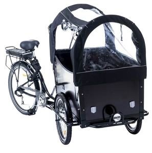 2 Front wheel electric tricycle cargo bike 250w CE family cargo bike