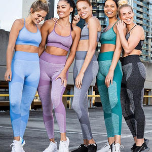 Professional Seamless Quick Dry Gym Outfit Fitness Clothing 2 Pieces Women Workout Sets Yoga Suit