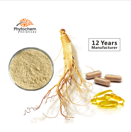 Free Sample High Quality Manufacturers OEM Capsule Oil Powder Root Leaf Ginsenoside Rg3 Rh2 Polysaccharide Panax Ginseng Extract
