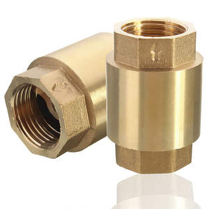 OEM supplier custom 1-2 NPT Brass In-Line Spring Vertical Copper Check Valve made in China