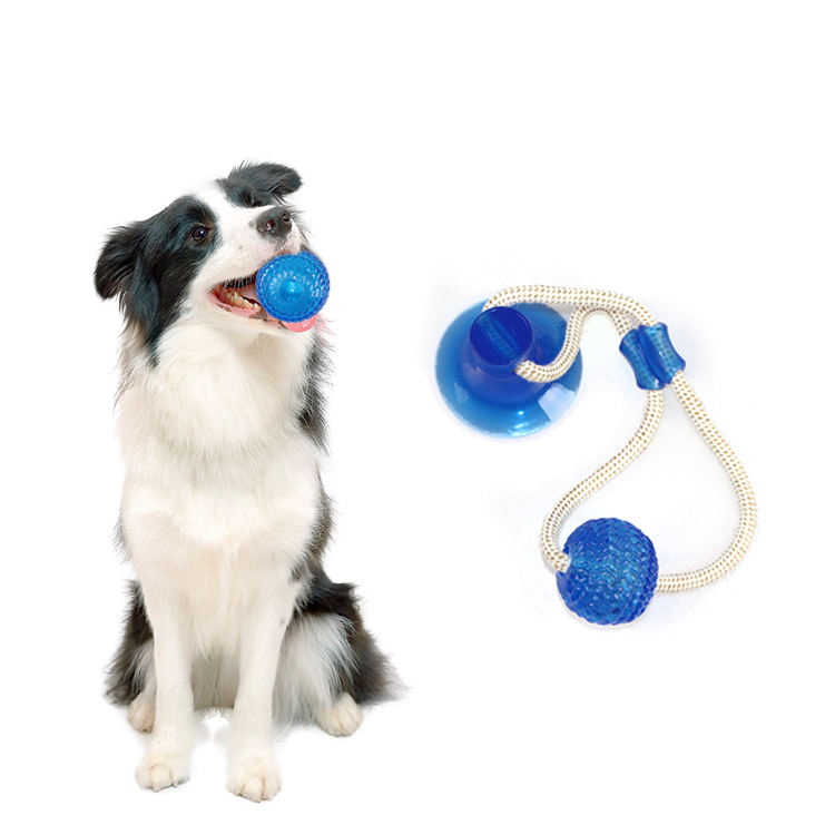 Amazon dog push Suction cup toys Interactive fun Pet toy sets with TPR ball