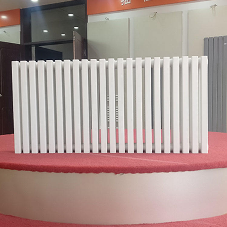 Factory Supplier New Style Bathroom Traditional Steel Column Radiators