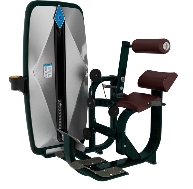 professional back extension TZ-9006 gym machine