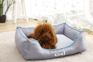 Tianyuan Huisdier Zomer Oxford Watrpoof Ademend Air Mesh Cooling Pet Hond Bed