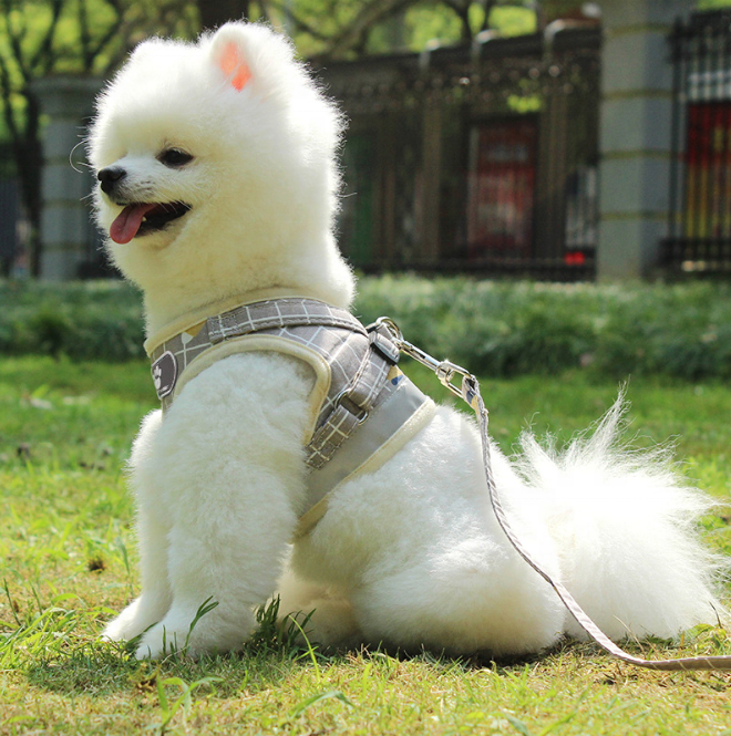 New Hot Selling Reflective And Breathable Strap Pet Harness