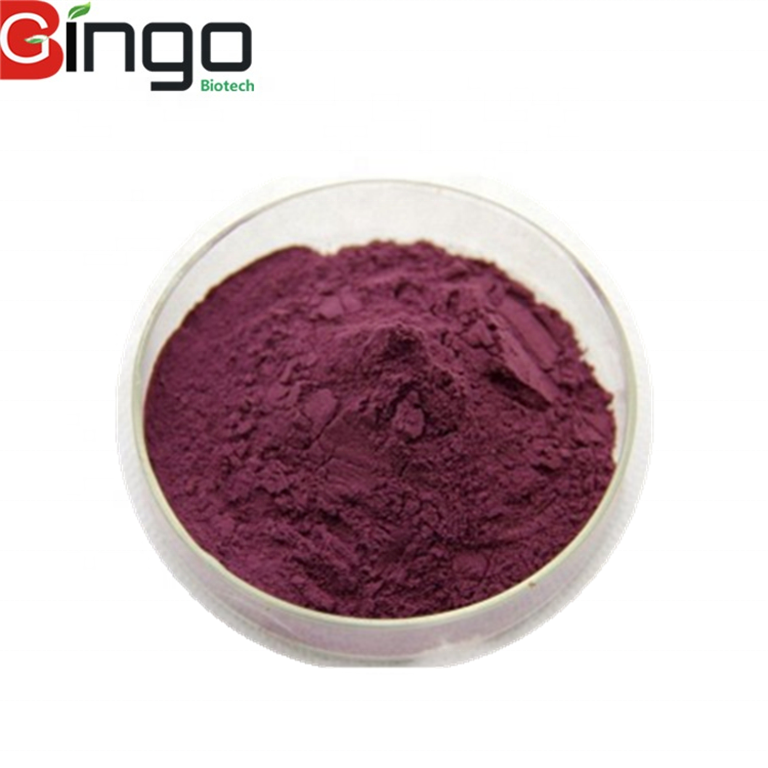 100%natural Fruit Juice Powder No Pigment No Additives water soluble natural organic instant blueberry fruit powder