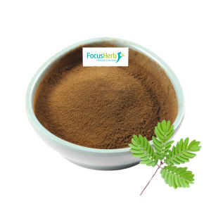 Botanical Extract Mimosa Hostilis Root Bark Powder In Bulk