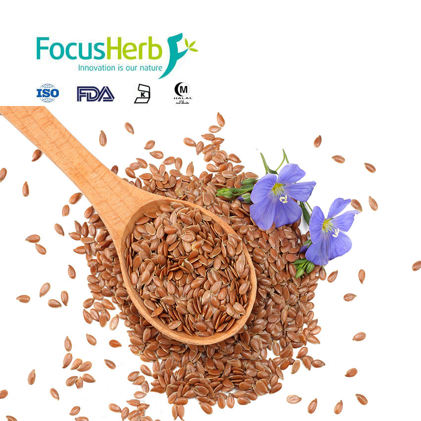 FocusHerb Best Price Flax Oil/ Flax Seed
