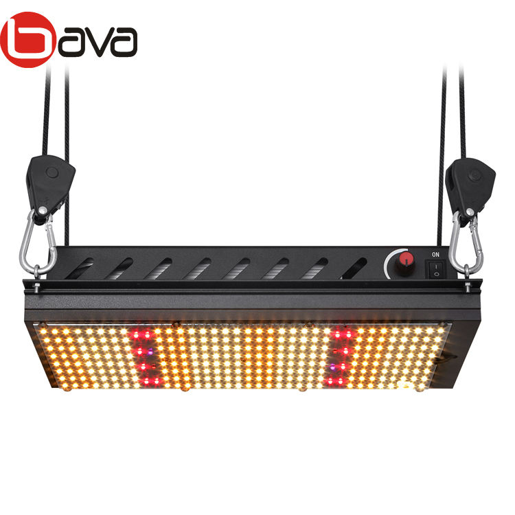 bava 120w Samsung lm301h full spectrum v4 uv 385nm ir 730nm red 660 quantum led grow light for plant