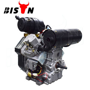 Bison(China) 290F 2 Cylinder Diesel Engine 20 Hp Cylinders 4 Stroke Small Engine For Sale