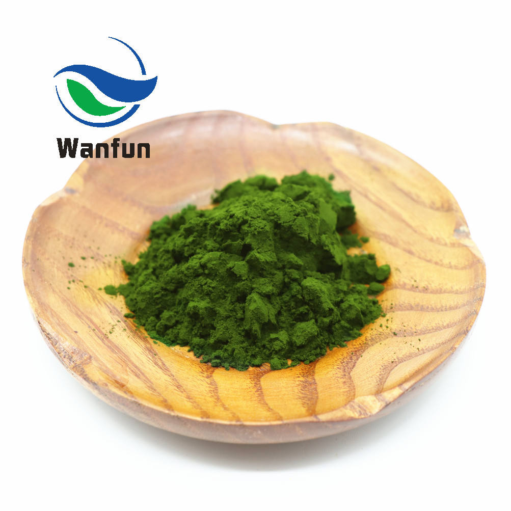 Buy Wholesale Private Label Organic Green Tea Extract Per kg Price Matcha Powder